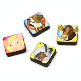 Icons swiss friends fridge magnets square, set of 4, in various designs