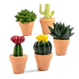Cactus magnéticos imanes de nevera con forma de cactus, 5 uds.