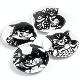 Glasmagnete Katzenkinder Dekomagnete mit Katzen-Motiven, 4er-Set