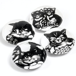 Cat babies fridge magnets with cat designs, set of 4