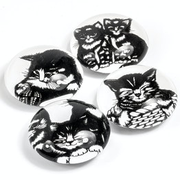 Glass magnets Kittens decorative magnets with cat designs, set of 4