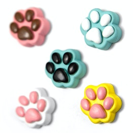 Paws paw-shaped decorative magnets, set of 5