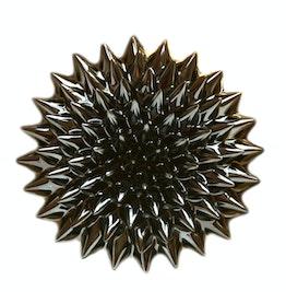 Ferrofluido 10 ml fluido magnetico per esperimenti, in un flaconcino PET con pipetta