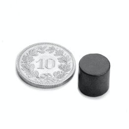 FE-S-10-10 Schijfmagneet Ø 10 mm, hoogte 10 mm, houdt ca. 400 gr, ferriet, Y35, zonder coating