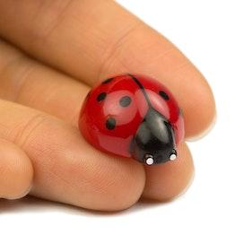 Ladybird magnets ladybird-shaped fridge magnets, set of 6