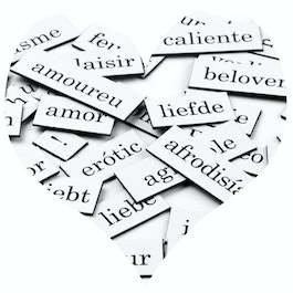 Magnetic words Love words, syllables and punctuation marks, 510 pieces, available in various languages