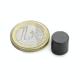 FE-S-10-10 Disco magnético Ø 10 mm, alto 10 mm, sujeta aprox. 400 g, ferrita, Y35, sin revestimiento