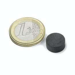 FE-S-12-05 Disco magnetico Ø 12 mm, altezza 5 mm, tiene ca. 400 g, ferrite, Y35, senza rivestimento