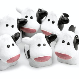 Cows strong fridge magnets, set of 6