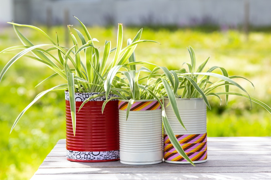 Upcycling: Tin cans are used as small flower pots