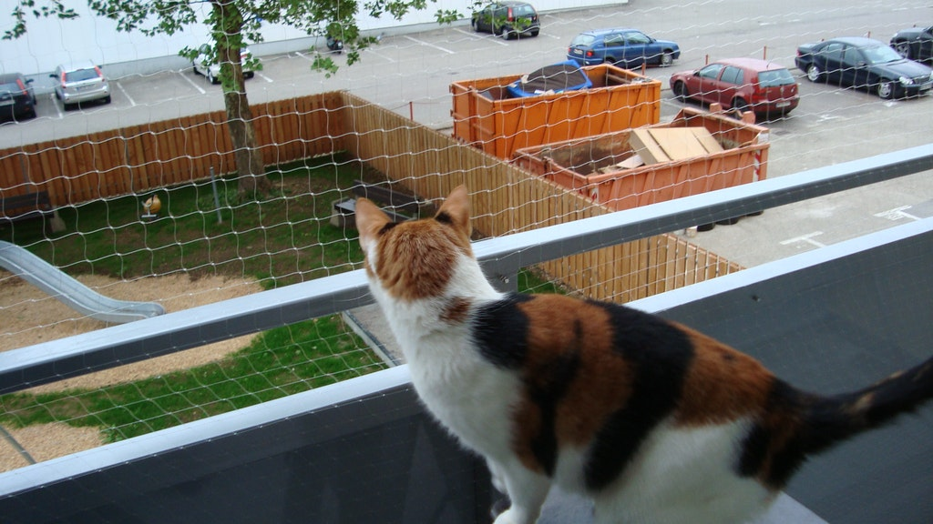 Fixer Un Filet De Protection De Chat Sur Le Balcon Sans Percer