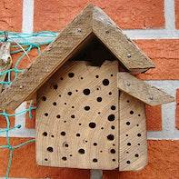 Bienenhotel mit Einblick