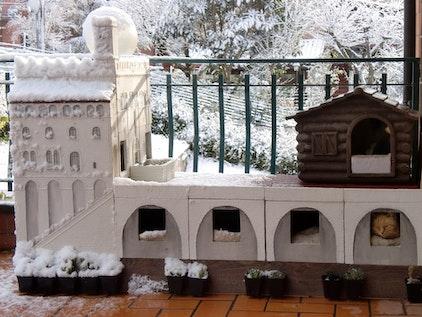 Zelfgebouwd kattenhuis voor de winter