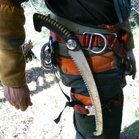 Pruning saw on the belt