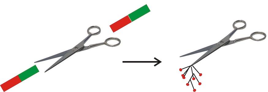Magnetisierung einer eisenhaltigen Schere