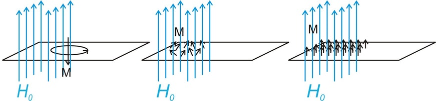 Die Magnetisierung M kommt bei Diamagneten durch die Induktion eines Kreisstroms zu Stande, der seiner Ursache (dem äußeren Feld) entgegengerichtet ist. M ist also H0 entgegengerichtet (links). Bei einem paramagnetischen Stoff existieren kleine Elementarmagnete im Material, die sich parallel zum äußeren Feld ausrichten und die Magnetisierung verursachen (mitte). In einem Ferromagneten wird diese Ausrichtung zusätzlich durch die Austauschwechselwirkung stabilisiert und die Magnetisierung ist insgesamt sehr viel größer (rechts). Auch bei Para- und Ferromagneten kommt es zur Induktion von Kreisströmen. Diese diamagnetische Magnetisierung wird jedoch vom stärkeren Para- und Ferromagtnetismus überlagert.