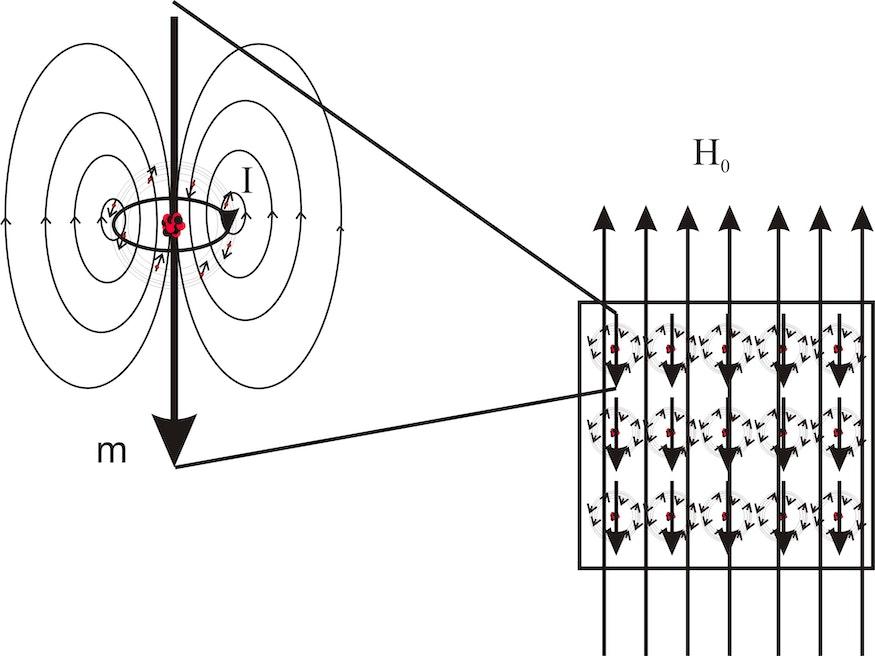 Jedes Material zeigt Diamagnetismus. Der Grund dafür ist in der Abbildung schematisch illustriert. Wird ein Material in ein äußeres Magnetfeld H0 eingebracht, so kommt es zur Induktion von Kreisströmen I mit magnetischen Momenten m, die dem äußeren Feld entgegengerichtet sind (Lenzsche Regel). Die gesamte Magnetisierung M, die sich als Summe über alle induzierten magnetischen Momente ergibt, ist demnach dem äußeren Feld entgegengerichtet. Der Diamagnet zeigt eine Magnetisierung χ • H0 mit leicht negativer magnetischer Suszeptibilität χ.